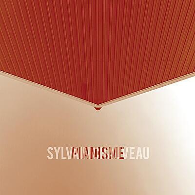 Sylvain Chauveau - Pianisme