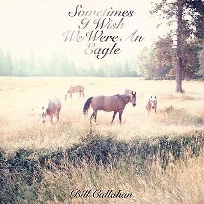 Bill Callahan - Sometimes I Wish We Were An Eagle