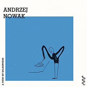 Andrzej Nowak - A View of Wilderness