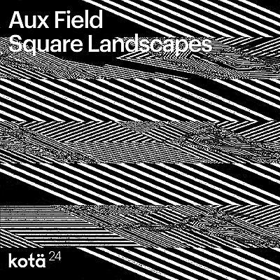 Aux Field - Square Landscapes