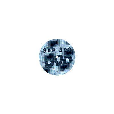 SnP 500 - SnP 500