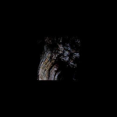 Brunnen - The Garden Of Perpetual Dreams