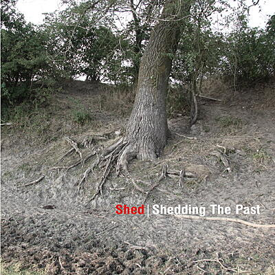 Shed - Shedding The Past