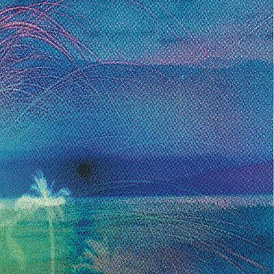Flying Saucer Attack & Roy Montgomery - Goodbye