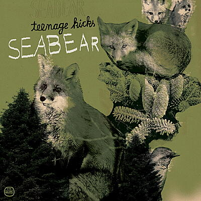 Seabear - Teenage Kicks / Piano Hands