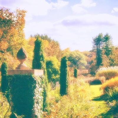 Poemme - Moments in Golden Light