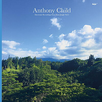 Anthony Child - Electronic Recordings from Maui Jungle Vol. 2
