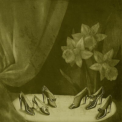 Alice Cohen - Into The Grey Salons