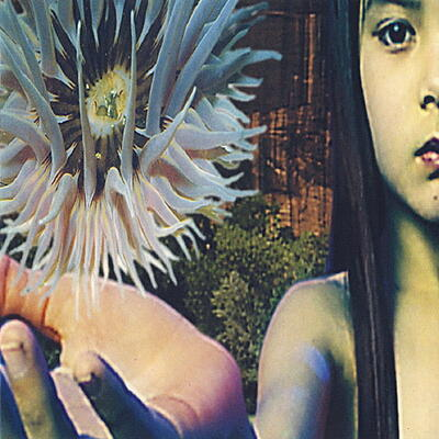 Future Sound Of London - Lifeforms