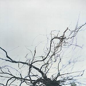 Yutaka Hirose - Nova + 4