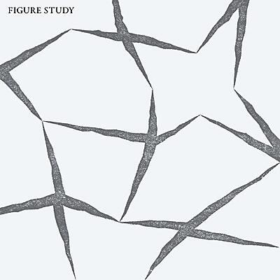 Figure Study - Figure Study