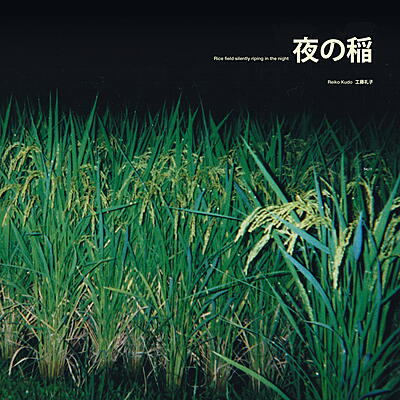 Reiko Kudo - Rice Field Silently Riping In The Night