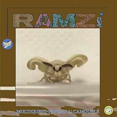 RAMZi - Multiquest Niveau 1: Camouflé