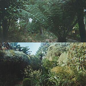Lieven Martens - Gardens, Fire and Wine